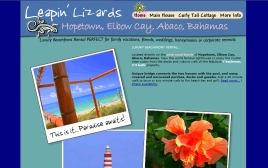 Leapin' Lizards web site
